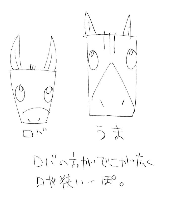 馬とロバの顔の違い