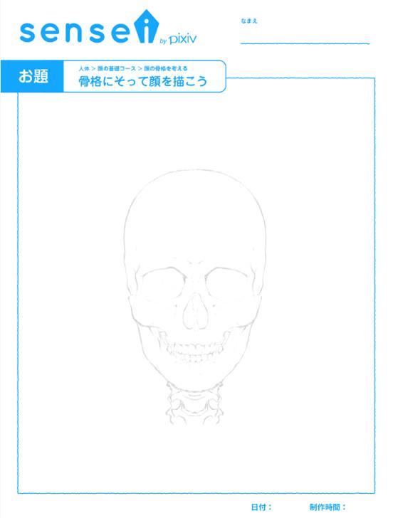 顔基礎④骨