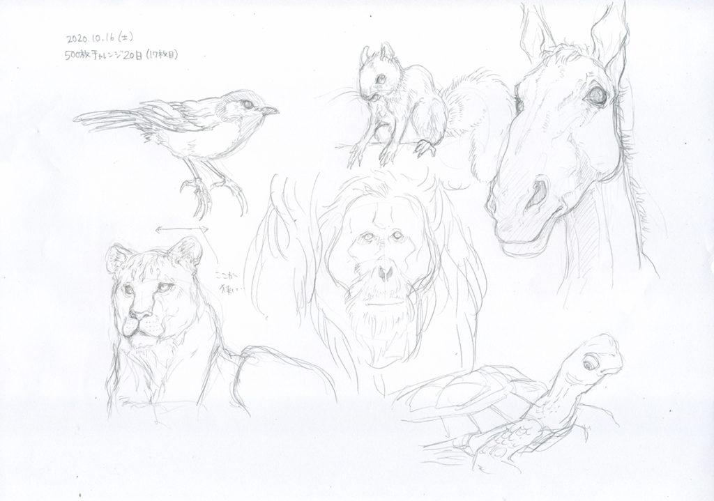 20日目は動物を模写する